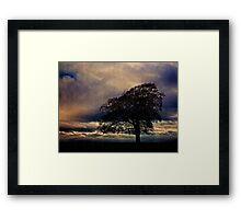 Moody Tree landscape, Gloucestershire, UK Framed Print