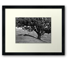 On the crest of the hill (35mm) Framed Print