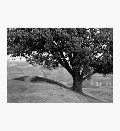 On the crest of the hill (35mm) Photographic Print