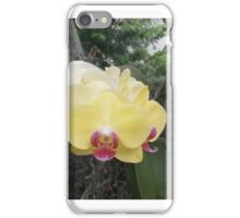Orchid 5 iPhone Case/Skin