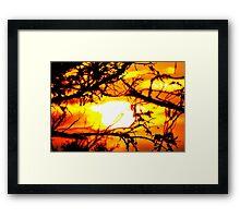 Tangled Sunset Framed Print