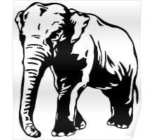 Asia Elephant Poster