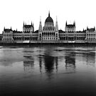 Parliament, Budapest by Rodney Johnson