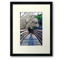 Bridge to Beauty Framed Print