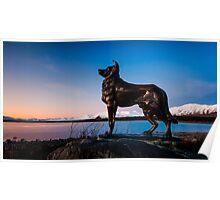 Tekapo Sunset Dog Poster