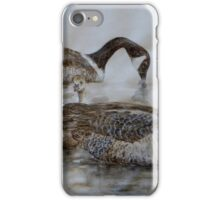 Geese and Goslings iPhone Case/Skin
