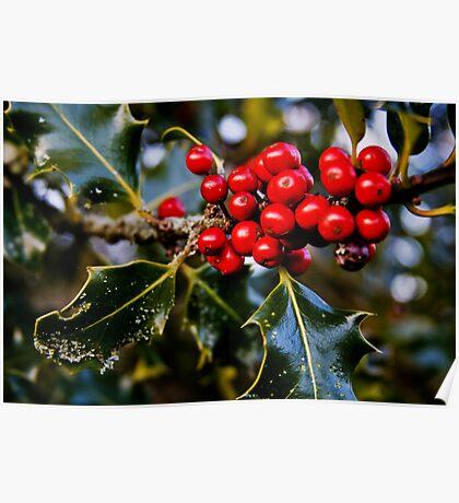 Happy Holly-days - Kent, WA Poster