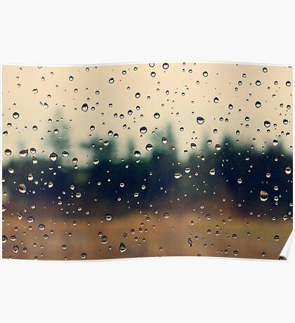 Rain Drops - Bonney Lake, WA Poster