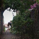 Back Street by WatscapePhoto