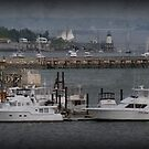 Hazy Harbor by Monica M. Scanlan