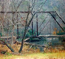 Old  Moody Bridge by Roger Jewell