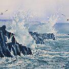 Sea, Splashes and Gulls by Glenn  Marshall