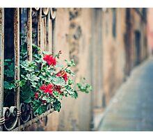 Montalcino #2 Photographic Print