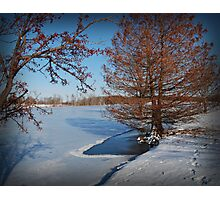 Frozen Lake Photographic Print