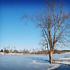 Frozen Lake by G. David Chafin