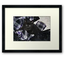Laundry? Framed Print