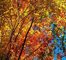 Leaf Adrenalin by MarianBendeth