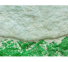 Moss on Stone Photographic Print