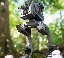 Morning patrol on the forest moon of Endor by Tom Milton