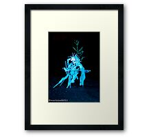 2011 FIREDANCE 90 Framed Print