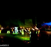 2011 FIREDANCE 96 by MARK HEAD