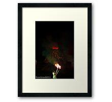 2011 FIREDANCE 109 Framed Print