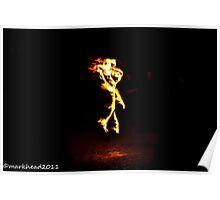 2011 FIREDANCE 124 Poster