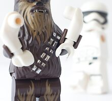 And they still won't let the wookie win? by Tom Milton