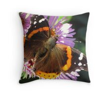 Admiral Wings Throw Pillow