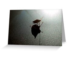A Bug And His Shadow Greeting Card