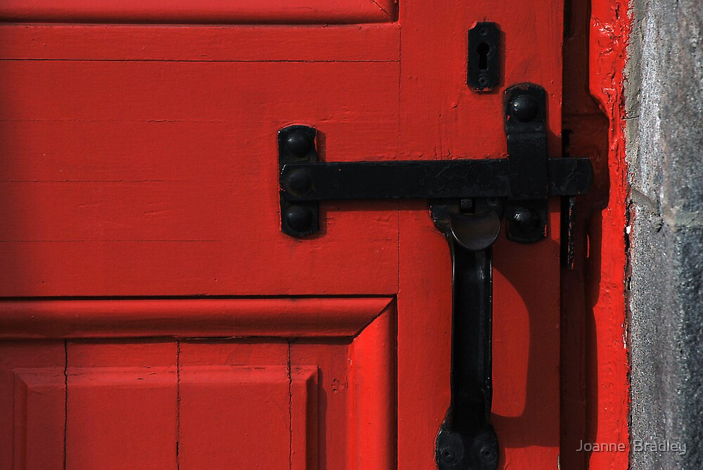 The Red Door by Joanne  Bradley