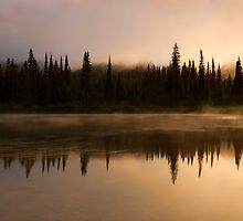 Golden Dawn by DawsonImages
