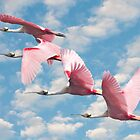 """Power Of Pink"" - roseate spoonbills flying by John Hartung"