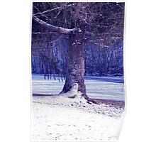 Winter Blues in Hendersonville Poster