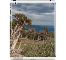 Timberline iPad Case/Skin