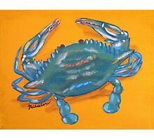 Crazy Crab Photographic Print