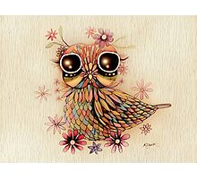 little flower owl Photographic Print