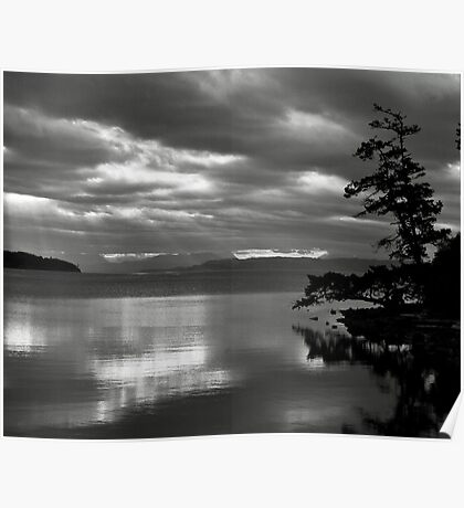 Sunrise inlet with tree silhouette Poster