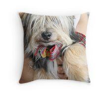 Cuddling Hamish Throw Pillow