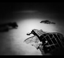 Lost Dreams and Sinking Violins   by Steve Johnson