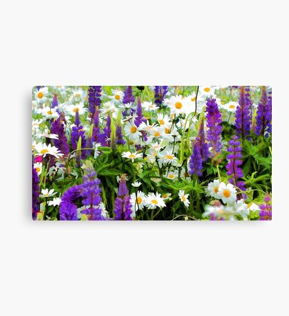 A Meadow of Wildflowers Canvas Print