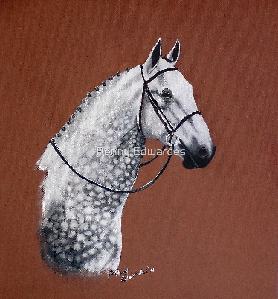 The Grey by Penny Edwardes