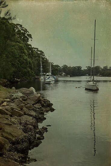 Currambene Creek by garts