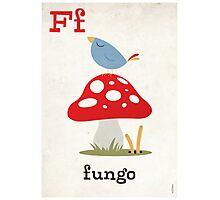 F is for Fungo Photographic Print