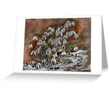 Snowdrops in the snow. Greeting Card