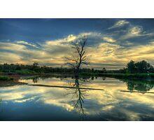 Wetland Dreaming Trees - Wonga Wetlands, Albury ,  Australia - The HDR Experience Photographic Print