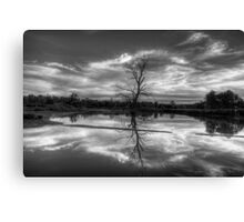 Wetland Dreaming (Monochrome) - Wonga Wetlands, Albury ,  Australia - The HDR Experience Canvas Print