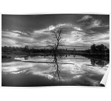 Wetland Dreaming (Monochrome) - Wonga Wetlands, Albury ,  Australia - The HDR Experience Poster