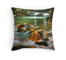 Alligator Streaming - Boulder Creek, Tully NQ Throw Pillow