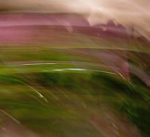 En Plein Air by Impressionista
